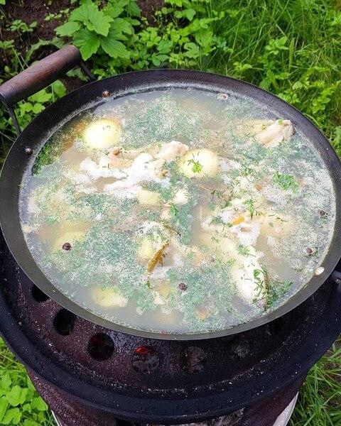 Суп из форели на природе