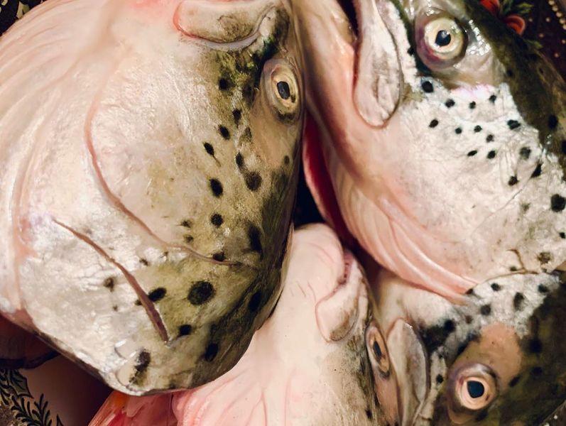 Уха из головы лосося