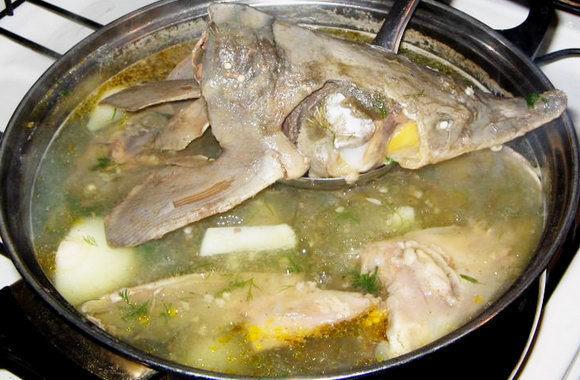 Суп из головы