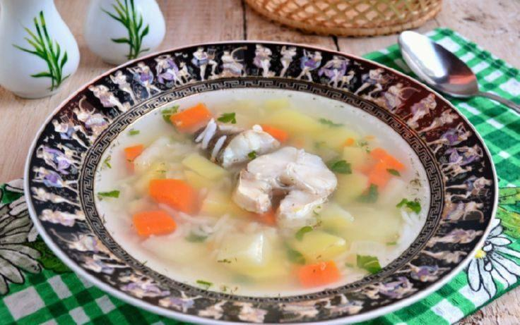 Суп из свежей наваги
