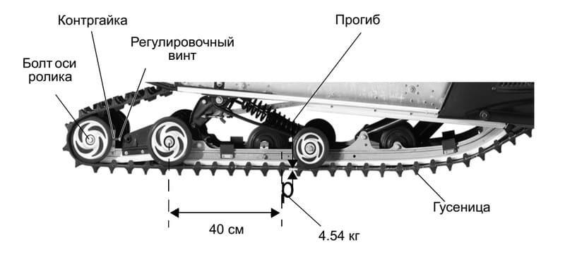 Размеры гусениц