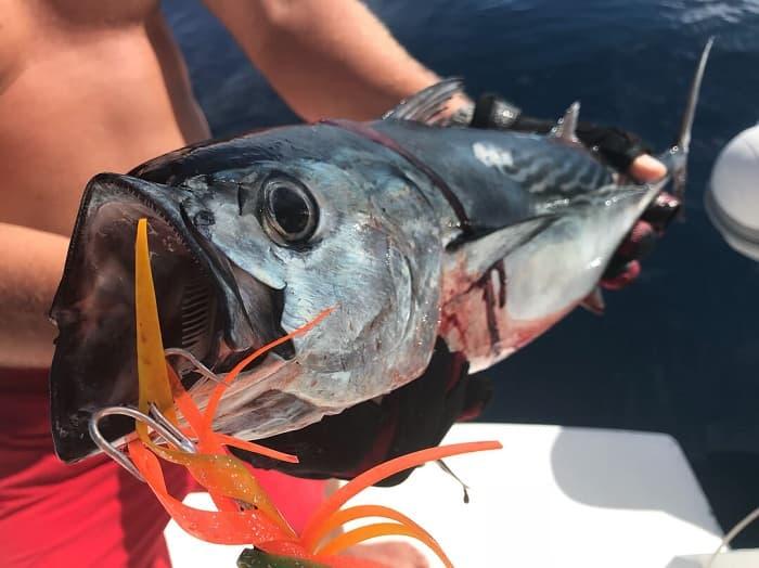 Рыбалка в Карелии в ноябре