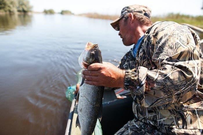 Рыбные места Могилёва