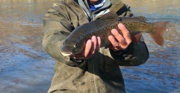 Рыбалка на реке в марте