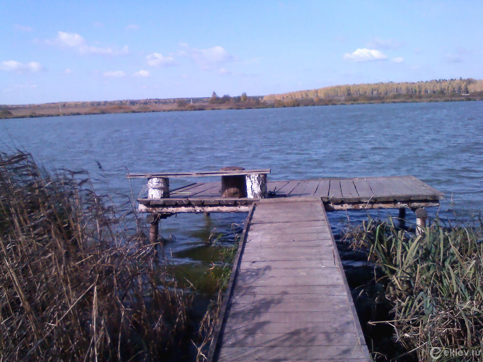 Платный пруд Березняки