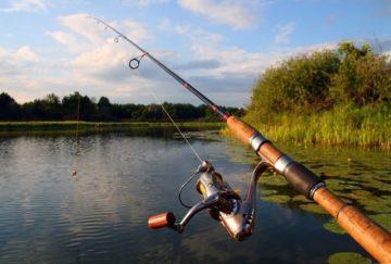 Самодельные удочки для рыбалки свойства и цены