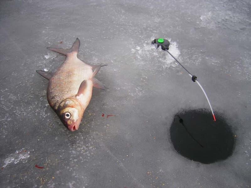 ловля на первом льду