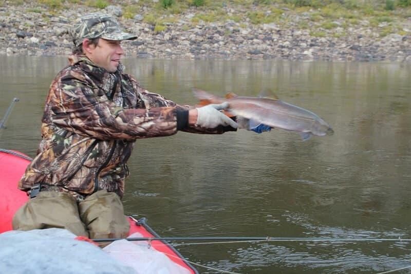 рыбалка тайменя в Сибири