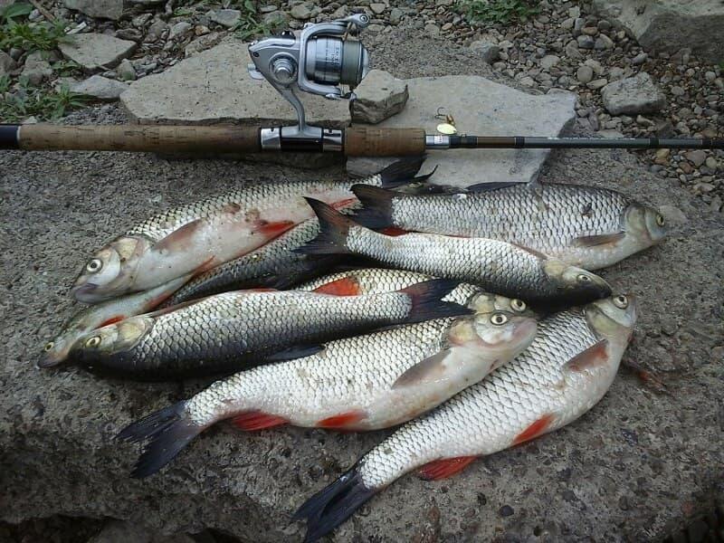 рыбалка в Башкирии в октябре
