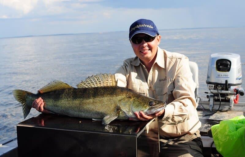 рыбалка на Волге Саратовская область