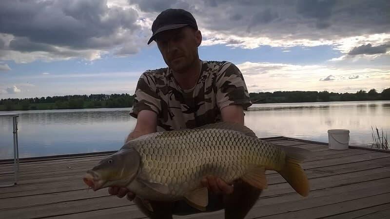 Кашинка: Ульяновская область рыбалка